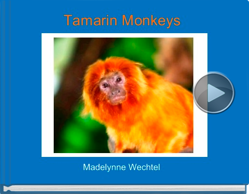 Book titled 'Tamarin Monkeys'