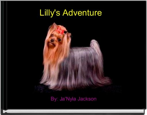 Lilly's Adventure