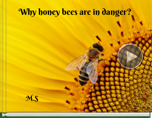 Book titled 'Why honey bees are in danger?'
