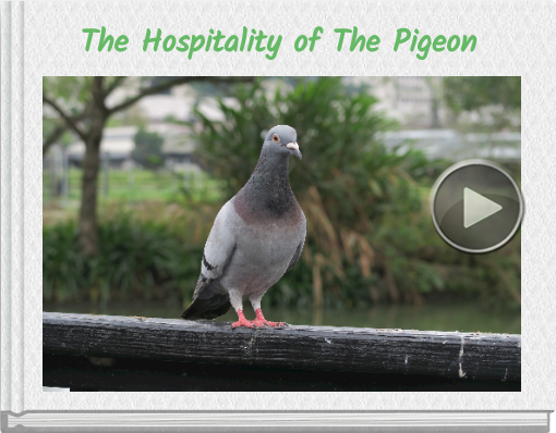 Book titled 'The Hospitality of The Pigeon'