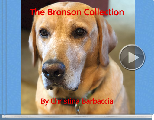 Book titled 'The Bronson Collection'