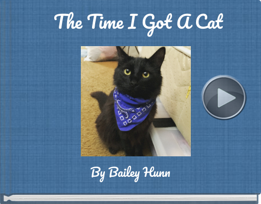 Book titled 'The Time I Got A Cat'