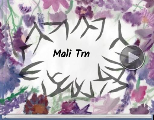 Book titled 'Mali Trn'