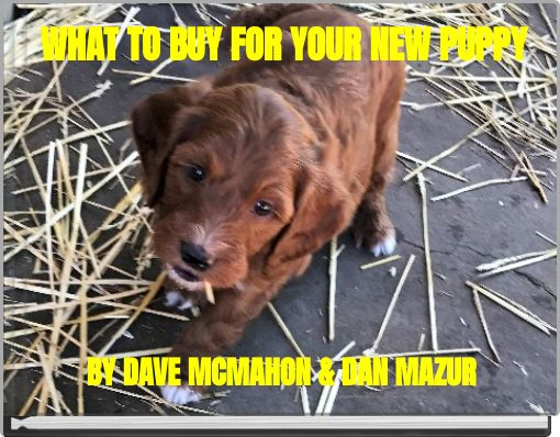 WHAT TO BUY FOR YOUR NEW PUPPY