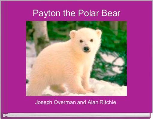 Payton the Polar Bear