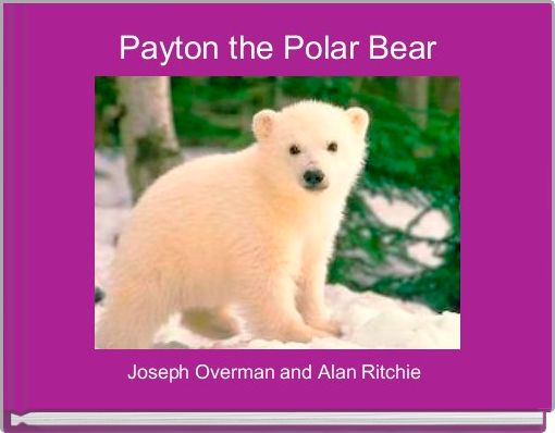 Payton the Polar Bear