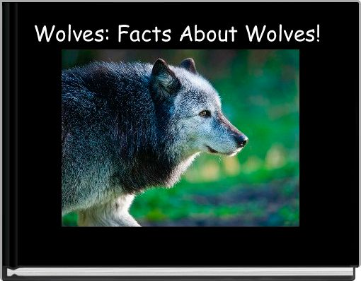 Wolves: Facts About Wolves!