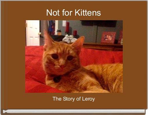 Not for Kittens