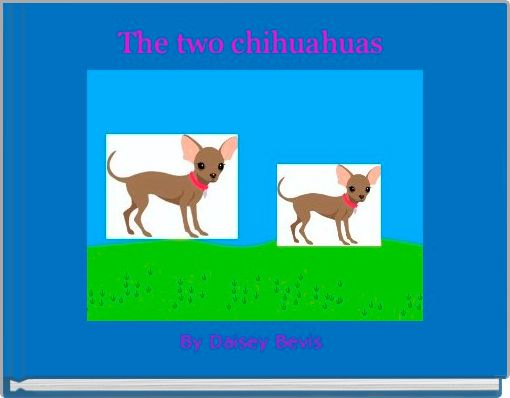 The two chihuahuas