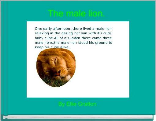 The male lion.