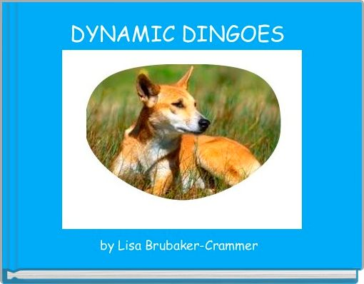 DYNAMIC DINGOES