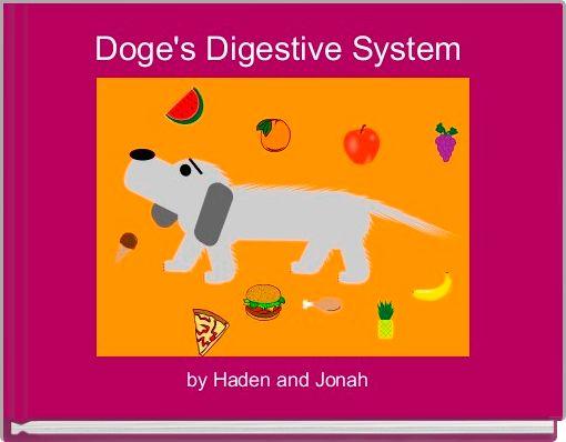 Doge's Digestive System