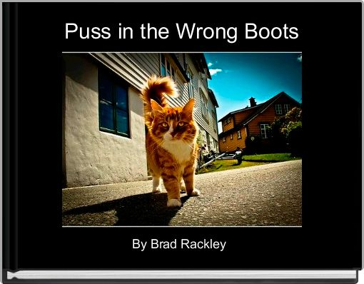 Puss in the Wrong Boots