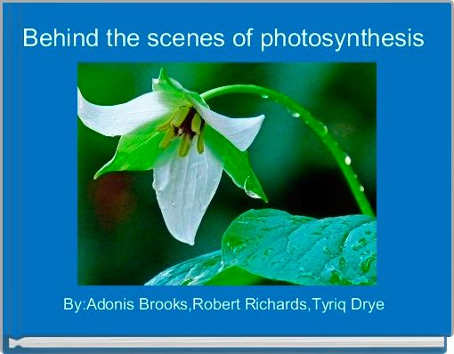 Behind the scenes of photosynthesis