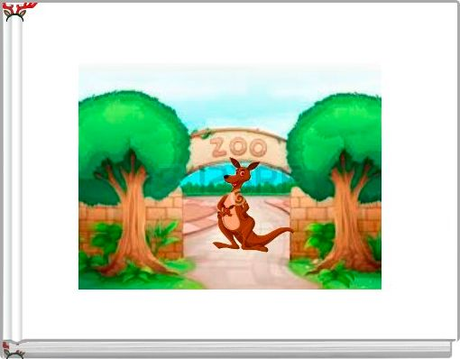 Drew The Kangaroo Is New At The Zoo