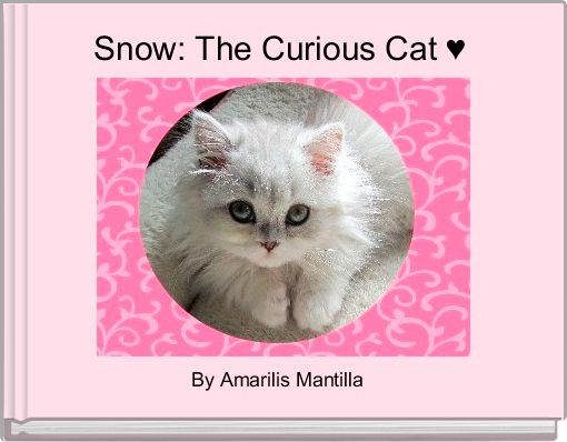 Snow: The Curious Cat ♥