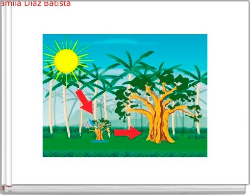 Photosynthesis (4 third graders)