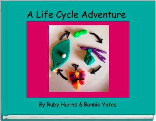 A Life Cycle Adventure