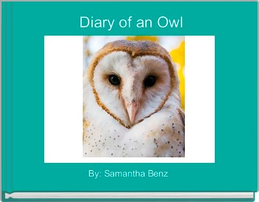 Diary of an Owl