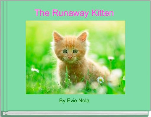 The Runaway Kitten