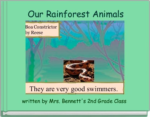 Our Rainforest Animals