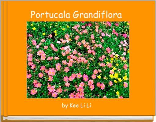 Portucala Grandiflora