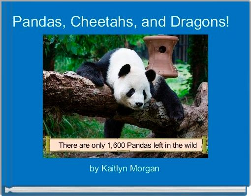 Pandas, Cheetahs, and Dragons!