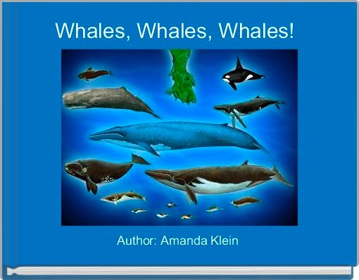 Whales, Whales, Whales!