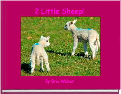 2 Little Sheep!