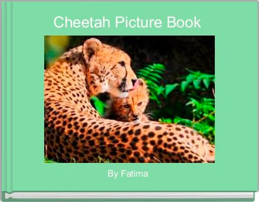 Cheetah Picture Book