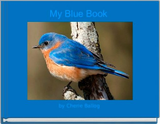 My Blue Book