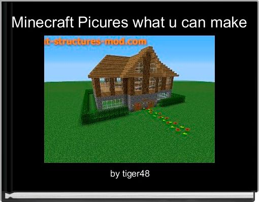 Minecraft Picures what u can make