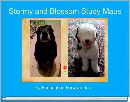 Stormy and Blossom Study Maps