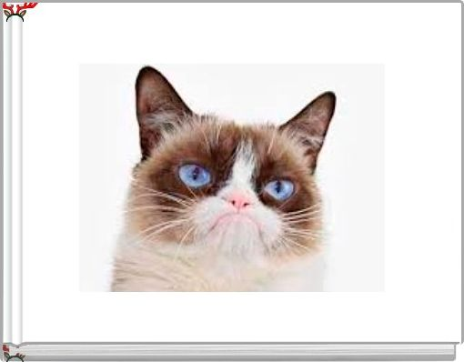 The Life of Grumpy Cat