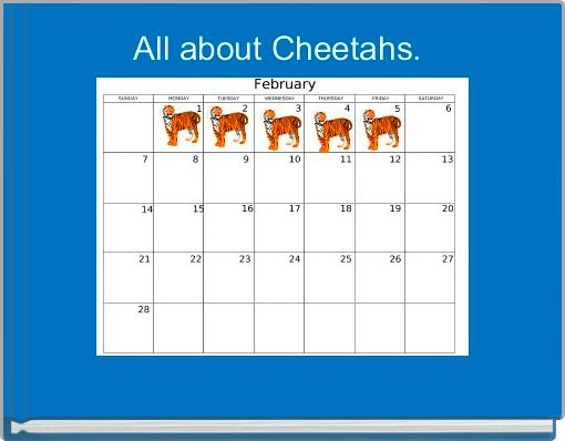 All about Cheetahs.