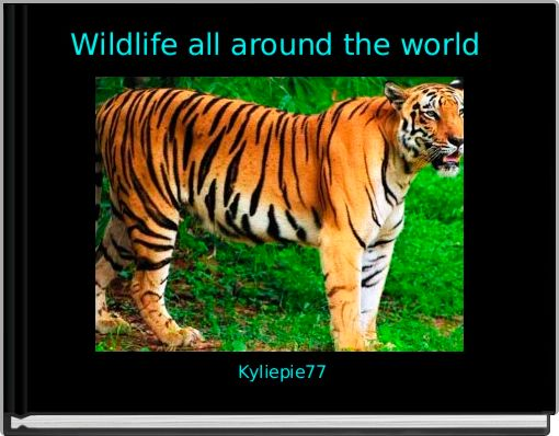 Wildlife all around the world