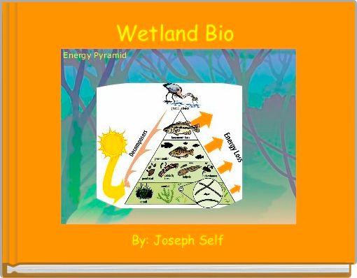 bio 20 biomes wetlands