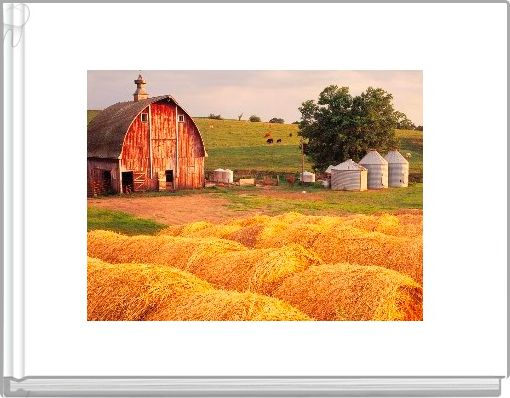 Tommy the Tomato