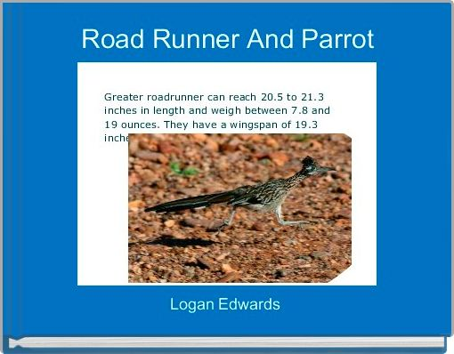 Road Runner And Parrot
