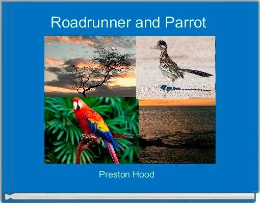 Roadrunner and Parrot