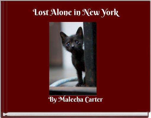 Lost Alone in New York