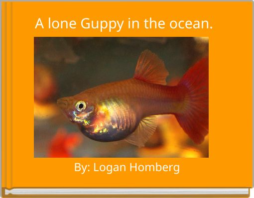A lone Guppy in the ocean.