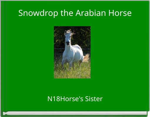 Snowdrop the Arabian Horse