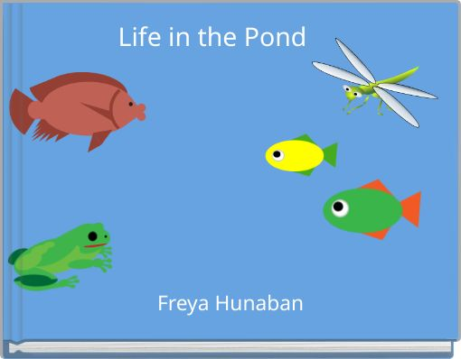Life in the Pond