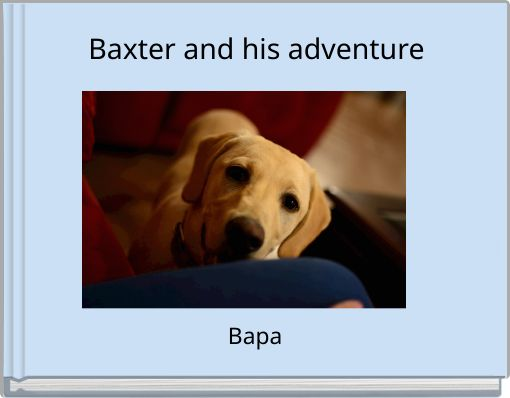 Baxter and his adventure