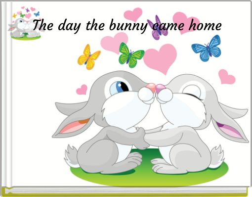 The day the bunny came home