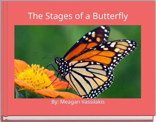 u0026quot the stages of a butterfly u0026quot
