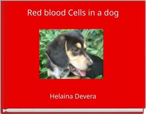how to build red blood cells in dogs