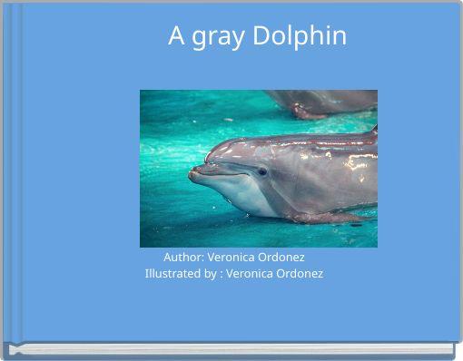 A gray Dolphin
