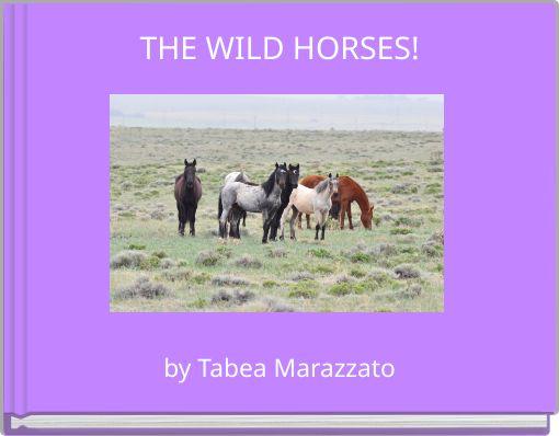 THE WILD HORSES!